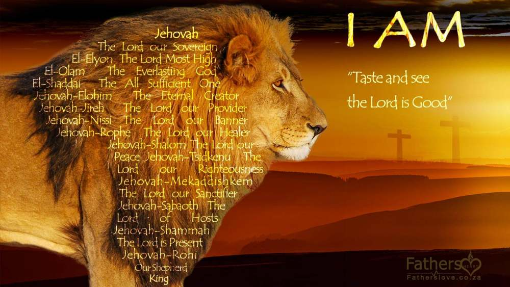 Lion of Judah the Lion of Praise Africa