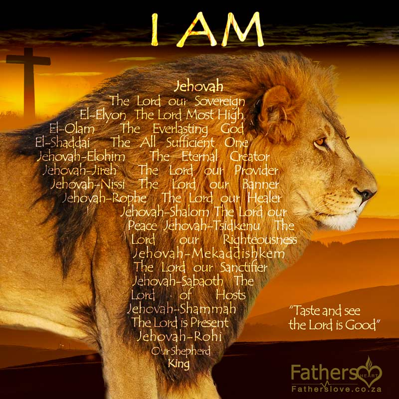 The-Lions-mane-Kingdom-wealth-transfer | Names of God