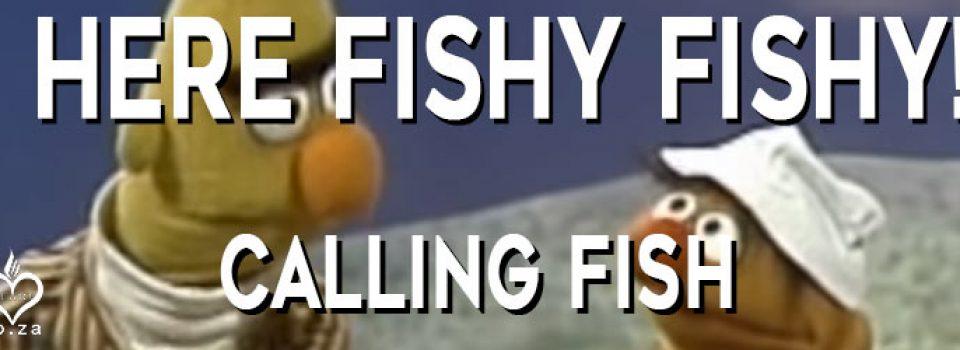 Here-fishy fishy Calling Fish